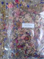 Fab Four dried flowers for paper